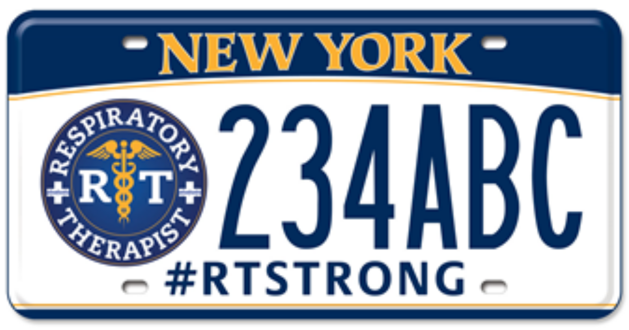 RT NYS License Plates